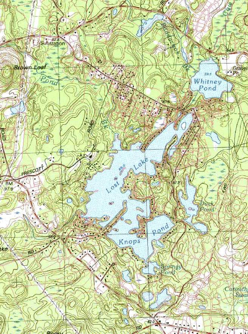 standard map02