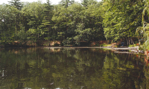 Groton Herald: Dramatic Success of Lost Lake Restoration Project