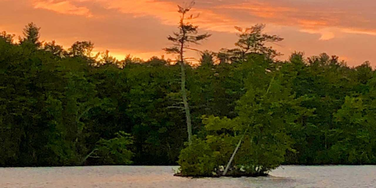 Lost Lake Residents & Visitors: Help Protect Our Islands